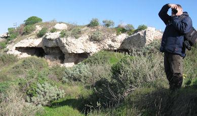 I sepolcri romani di Tuvixeddu