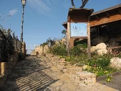 La necropoli di Bonaria, allo stato dell'arte assai degradata.