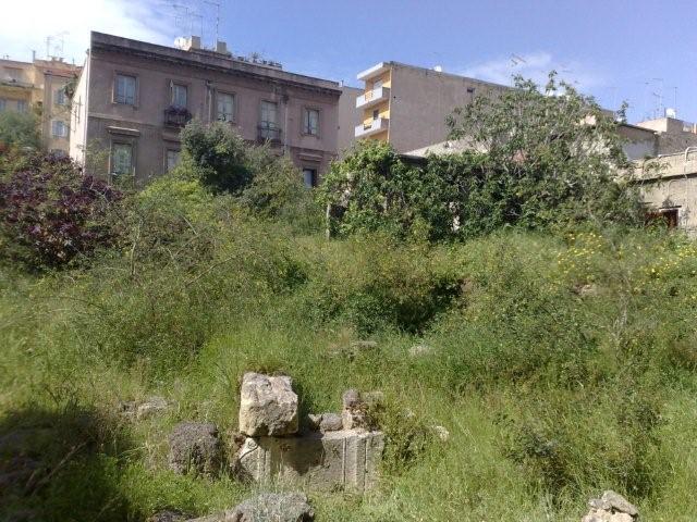 I ruderi romani e le sterpaglie