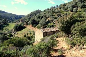 Via_Argento_Ale_Melis_Sardegna_5