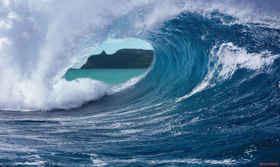 Poetto_Banner_Polastri_Tsunami