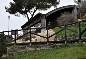 Parco_bonaria_verde_cagliari