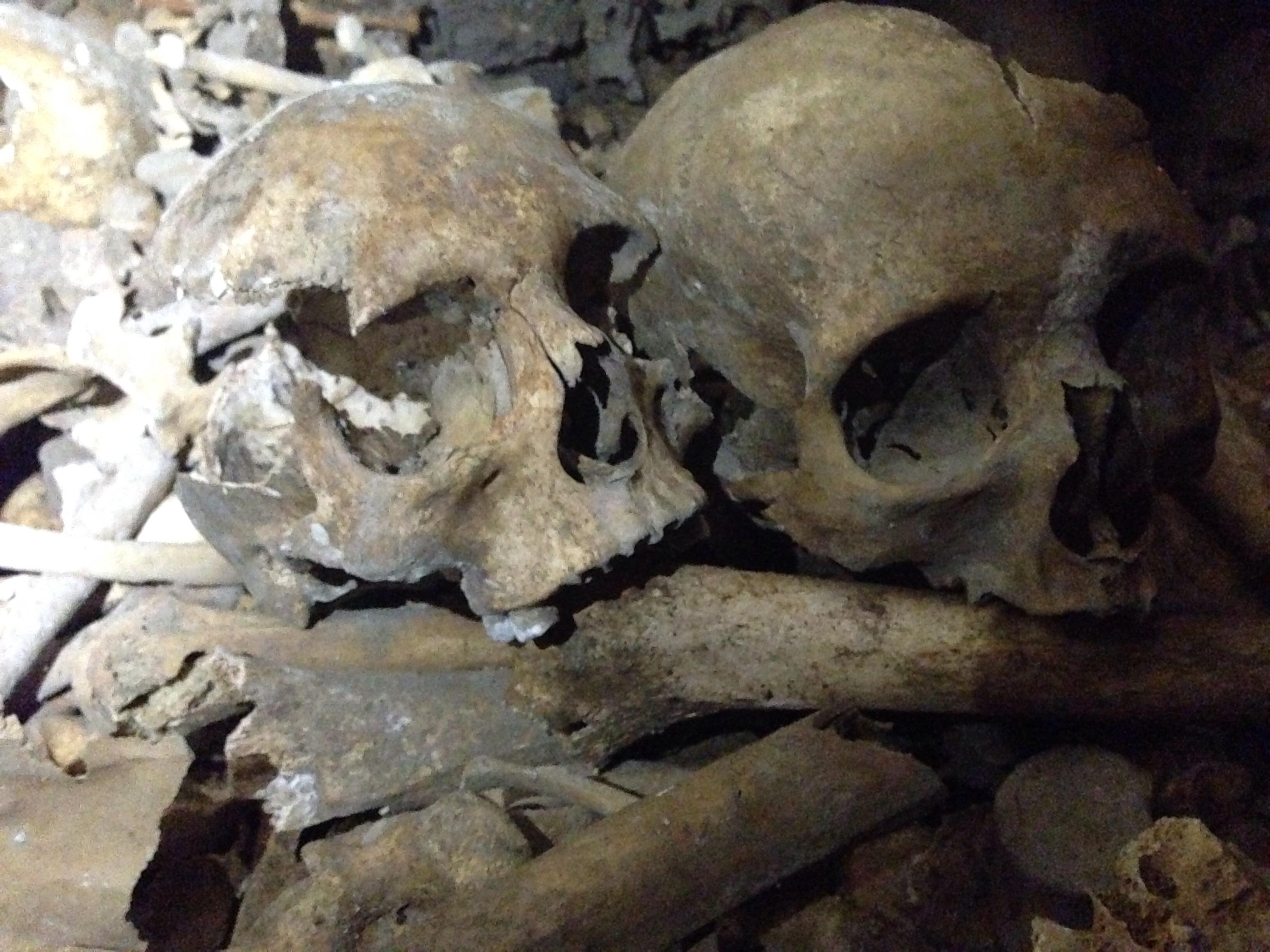 In sardegna spunta uno scheletro gigante ed subito for Subito it arredamento sardegna