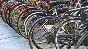 Biciclette in una immagine tratta dal Web.