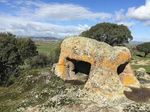 Una domus particolarissima: la scultura del Toro.