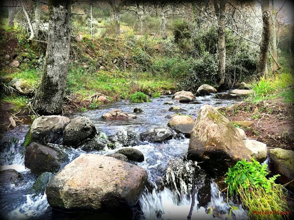 fiume_Polastri_Bonorva