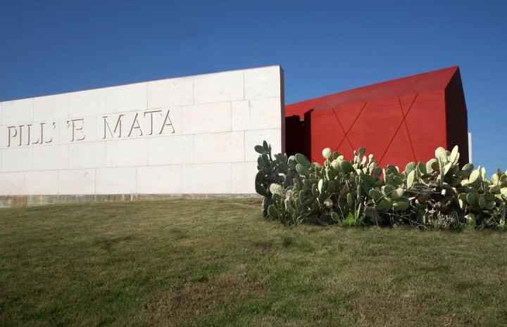 Il museo visto dall'esterno
