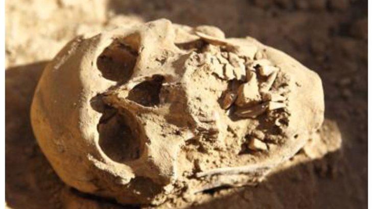 Scoperta cranio umano