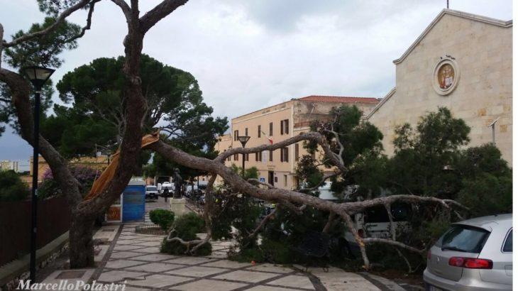 Albero spezzato cagliari tempesta