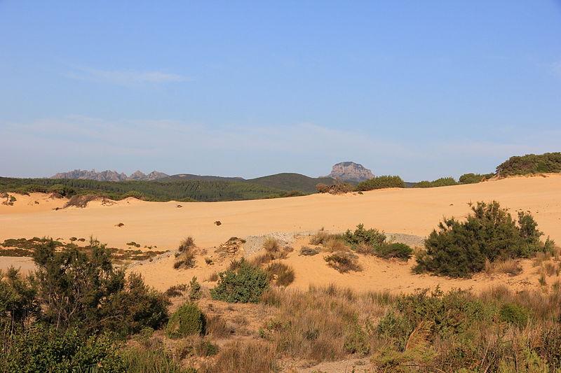 Le dune di Piscinas
